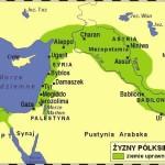 Zyzny_Polksiezyc